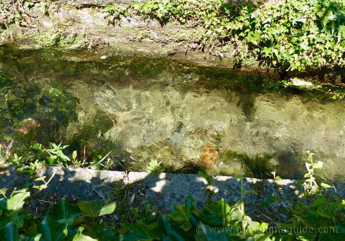 Fresh water stream in Santa Fiora.