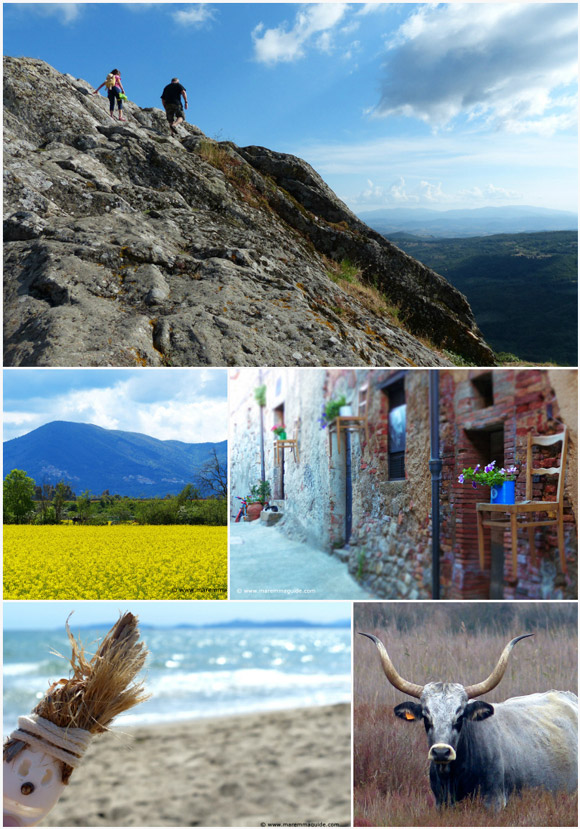 Rural Tuscany off the beaten path in Maremma Italy