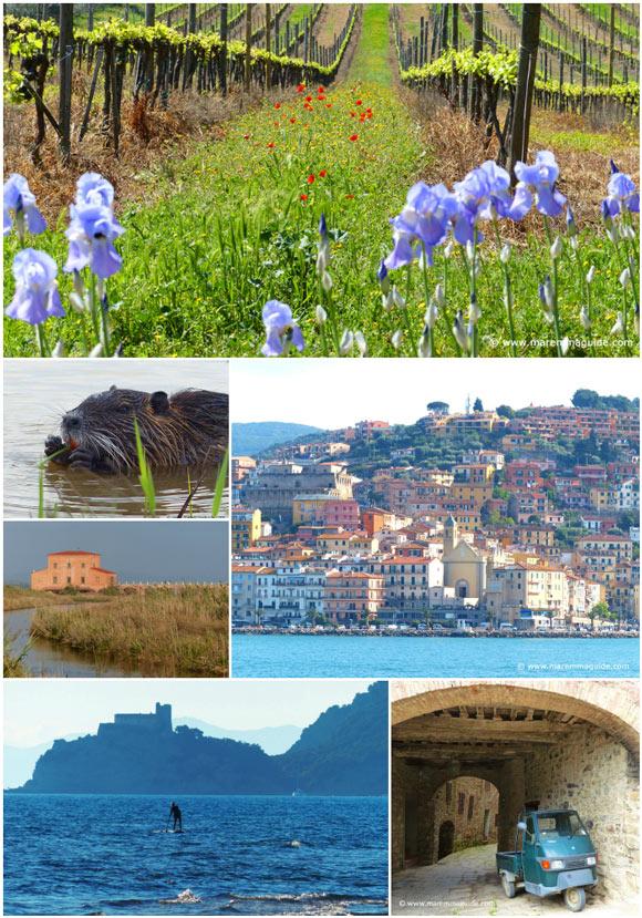 Dream holidays in Italy Tuscany