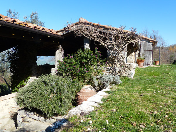 Tuscany property: Maremma farmhouse with annexe