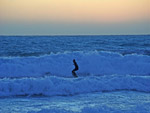 Maremma Tuscany Surf