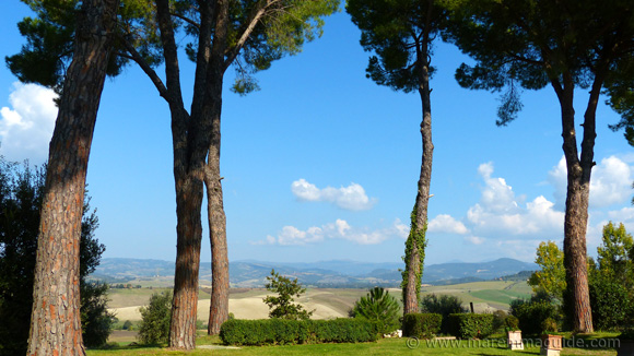 Tuscany wine estate in Maremma