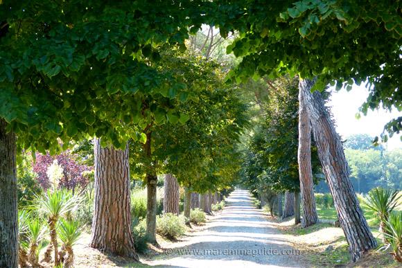 Tuscany wine estate Villa Aquaviva, Montemerano Maremma Italy