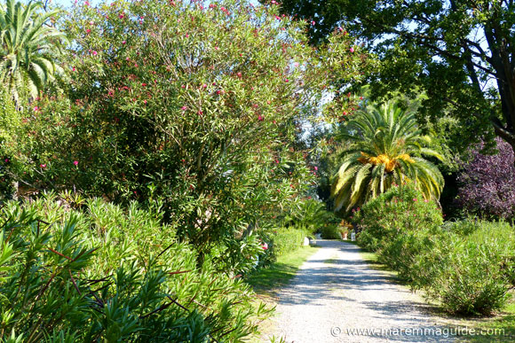 The Tuscany wine estate tour takes you through the winery gardens.