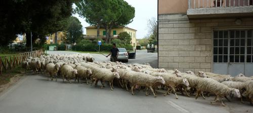Valpiana: daily life in Italy
