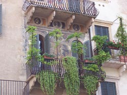Verona pictures: a Verona balcony