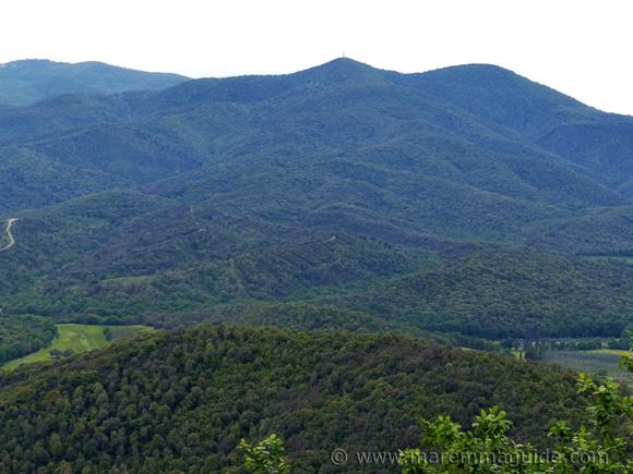 Wooded hills around Vetulonia Tuscany Italy