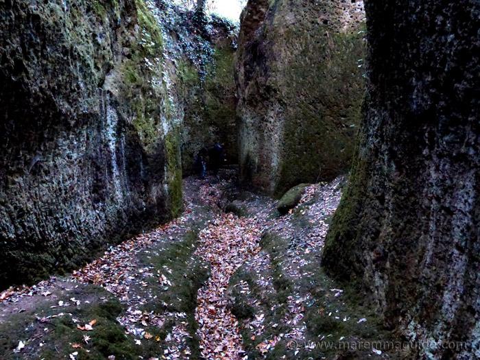 Vie Cave Maremma Tuscany