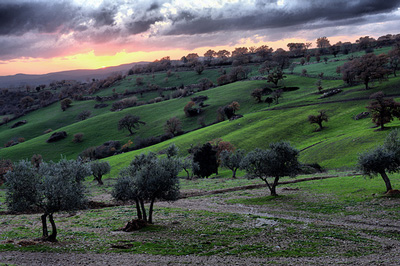 Winter sunset in Maremma