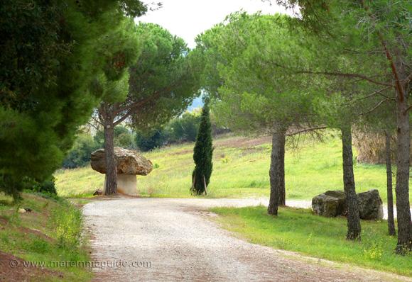 World's largest porcini mushroom in Tuscany!