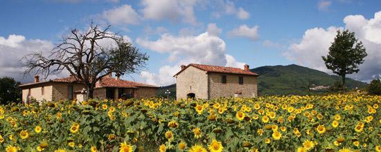 Apartment farmhouse in Tuscany: vacations in Maremma