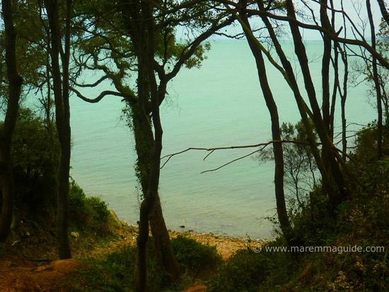 Cala Terra Rossa 2: Scarlino Maremma beach Tuscany