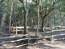 Picnic area at Cala Violina