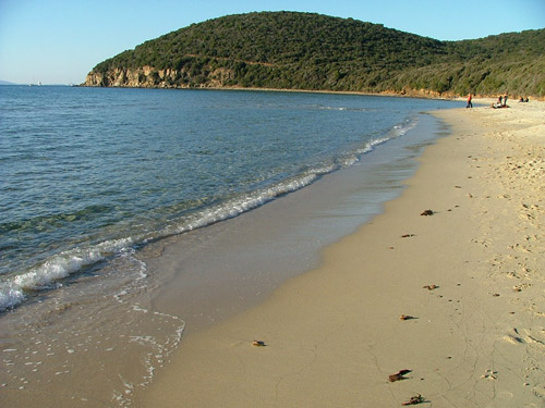 Cala Violina in Maremma: top of the best beaches in Italy