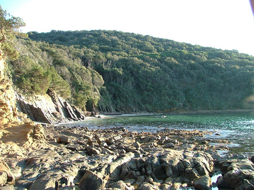 Best beaches Italy: Cala Violina in the Golfo di Follonica with the woodland of the Bandite di Scarlino down to the sea