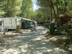 Camping Tahiti, Pratoranieri, Follonica: campsites on the beach in Tuscany in Maremma, Italy