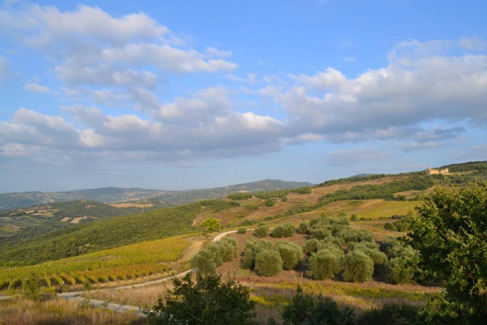 Panoramic view from the old farmhouse in Tuscany for sale in Maremma