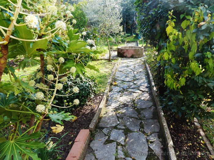 Podere Peroporcino garden in November.