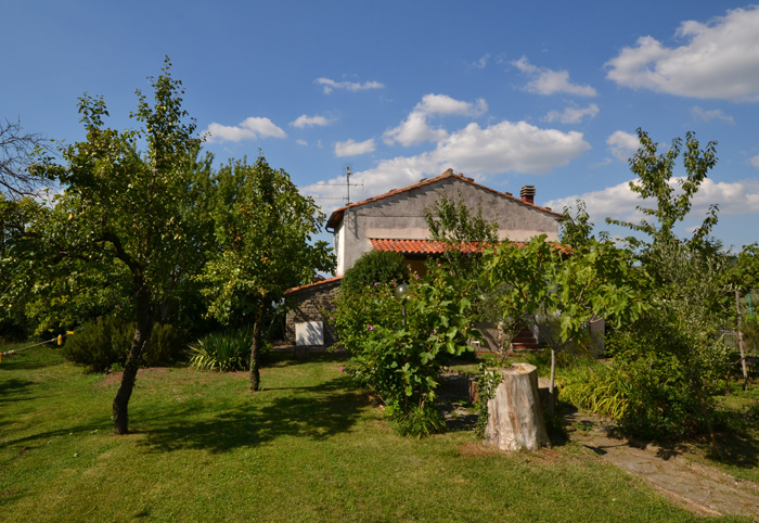 Castel del Piano Tuscany real estate: house for sale with garden and olive trees.