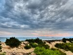 Il Pino spiaggia beach Piombino