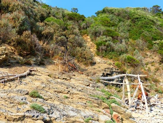 Cala Il Poggettone beach Punta Ala