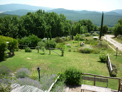 Investment property in Tuscany Italy: Maremma real estate
