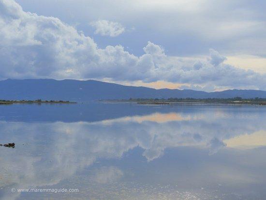 Riserva Naturale ed Oasi della Laguna di Orbetello in November Maremma Tuscany