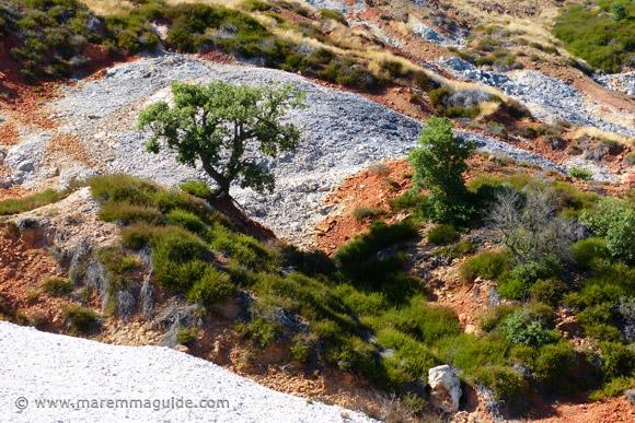 Le Biancane Geosite at Monterotondo Marittima Maremma Tuscany Italy