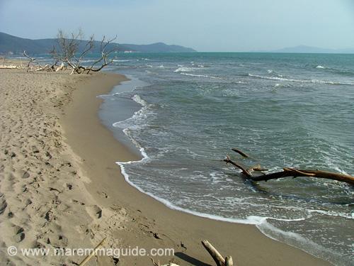 Marina di Alberese beach Maremma Tuscany