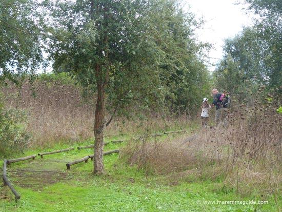 The Orbetello lagoon birdwatching footpath
