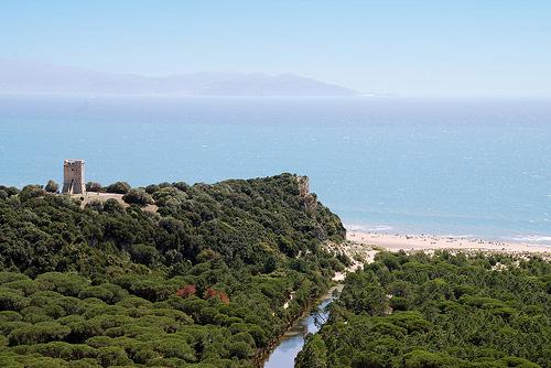 Maremma Italy Landscape: Marina di Alberese within the Parco Regionale della Maremma