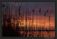 A silent sunrise over Burano lake, Maremma