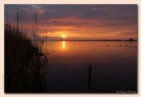 Sunrise over the lake at Burano, Maremma
