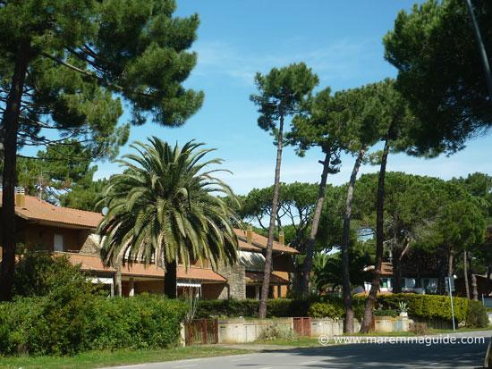 Principina a Mare, Grosseto Maremma Tuscany