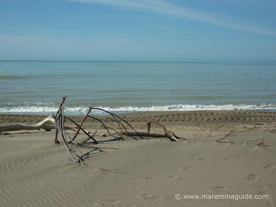 Principina a Mare spiaggia Grosseto Maremma