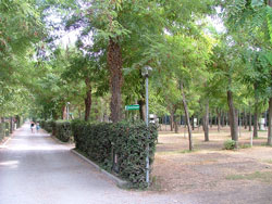 Riva dei Butteri Camping and Cottages, Follonica: Italian campsites in Maremma, Italy