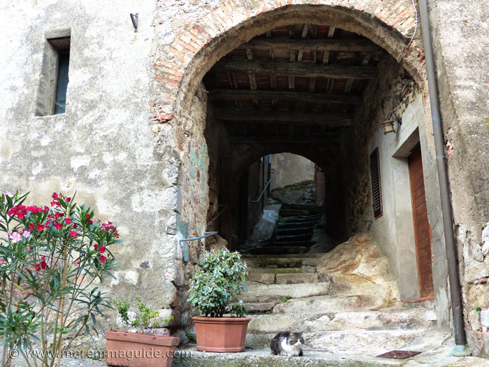 Roccatederighi Tuscany Italy: cat asleep in medieval alleyway.