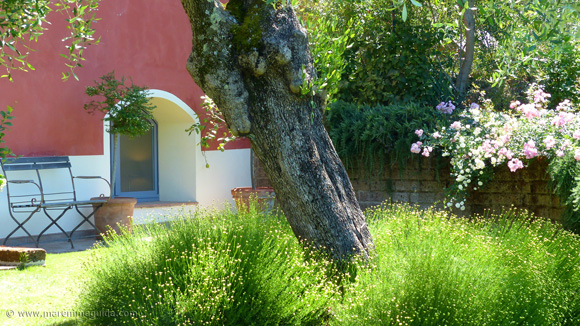 Romantic bed and breakfast in Tuscany and one of the best places to stay in Maremma