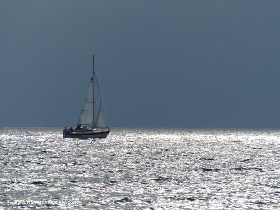 Sailing in Maremma Tuscany