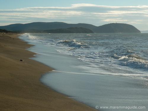 San Vincenzo Tuscany beach Rimigliano in the nature reserve of Parco Costiero di Rimigliano