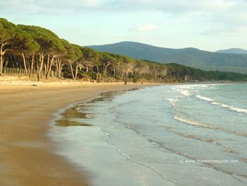 Scarlino beach