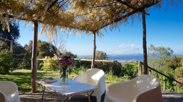 Maremma holiday cottage with wisteria covered terrace and infinity swimming pool.
