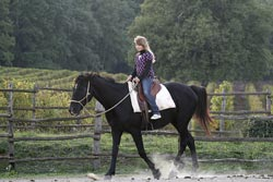 Farmhouse Tuscany horse Agriturismo Podere La Cerreta Sassetta Maremma Italy