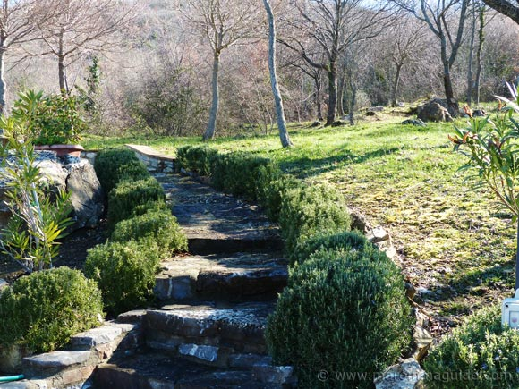 Scansano farmhouse for sale: garden in winter.