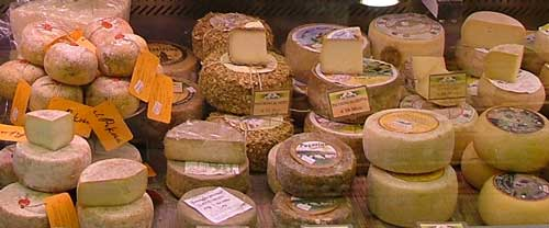 Typical Italian cheeses